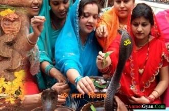 Nag Panchami ka Tyohar India Anmolgyan